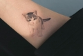 Tatuajes de gatos – los 100 mejores diseños que vas a encontrar en la red