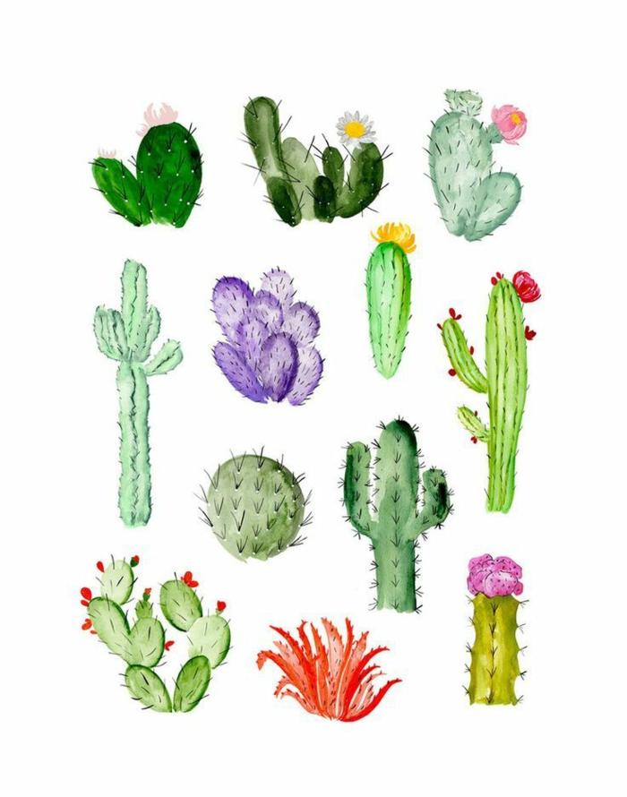 cactus dibujados con acuarelas, pequeños motivos con pintura acuarela, pinturas en acuarela de motivos florales en fotos