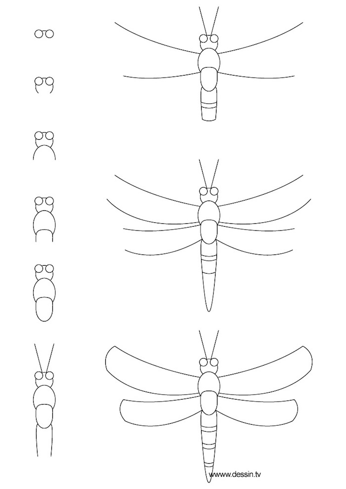 como dibujar insectos y animales paso a paso, tutoriales de dibujos para niños y principiantes, dibujos faciles y bonitos