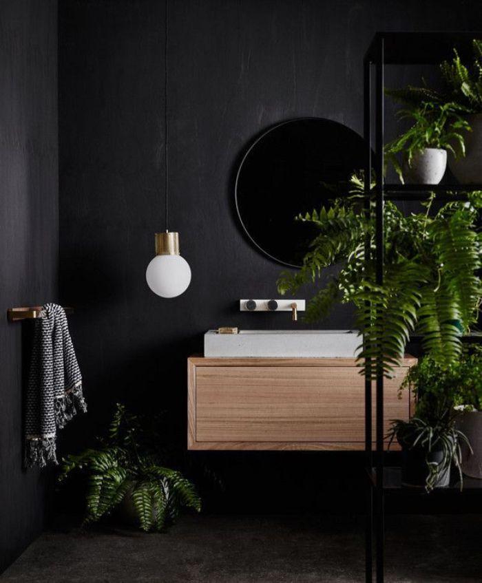 baño con paredes pintadas en color negro, decoración con espejo oval moderno y plantas verdes, cuartos de baño modernos