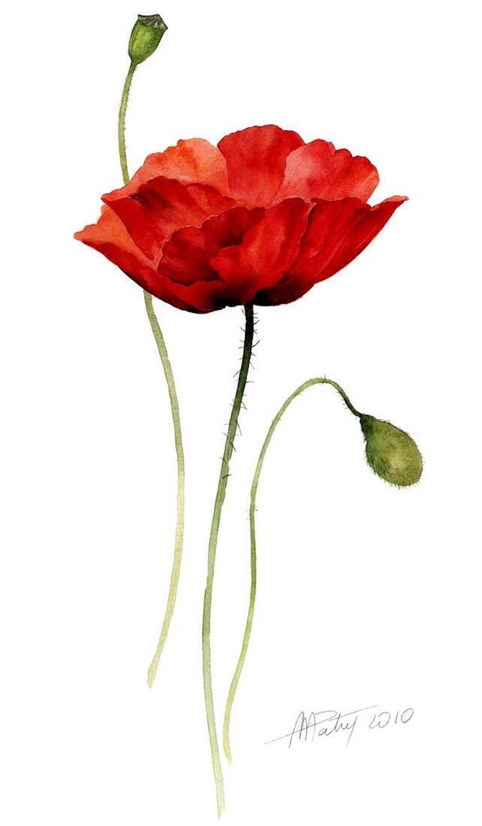 dibujos bonitos de flores para redibujar, las mejores ideas de dibujos para principiantes y avanzados para dibujar