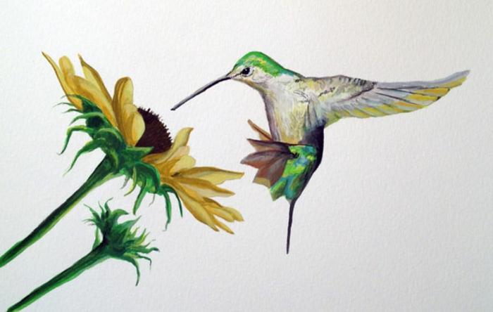 como dibujar flores y animales con acuarelas, dibujos con acuarelas faciles y bonitos, dibujar colibri girasol en colores