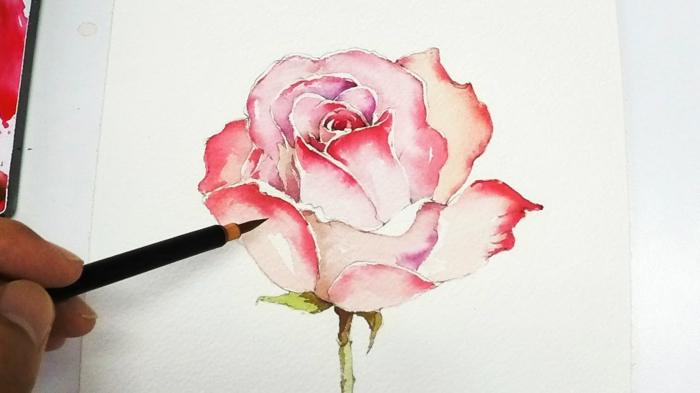 pasos para dibujar una rosa con acuarelas, ideas bonitas de dibujos para dibujar faciles para niños y adultos, dibujar es divertido