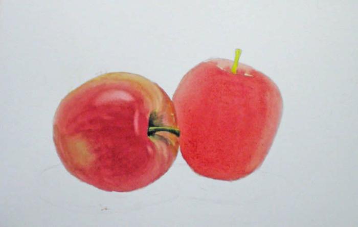 como dibujar objetos sencillos con acuarelas, aprender a dibujar una manzana, ideas para dibujar sencillas paso a paso