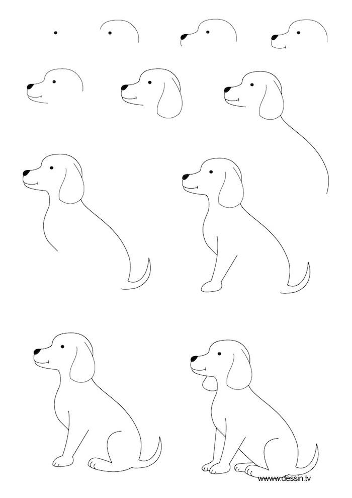 ideas de dibujos para principiantes y niños, como dibujar un perro paso a paso, dibujos sencillos e inspiradores a lápiz