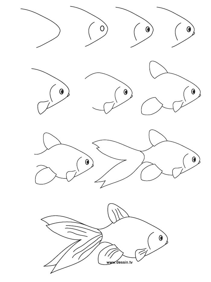 dibujos de animales super simpáticos en unos pasos sencillos, como dibujar una pez, ideas de dibujos originales