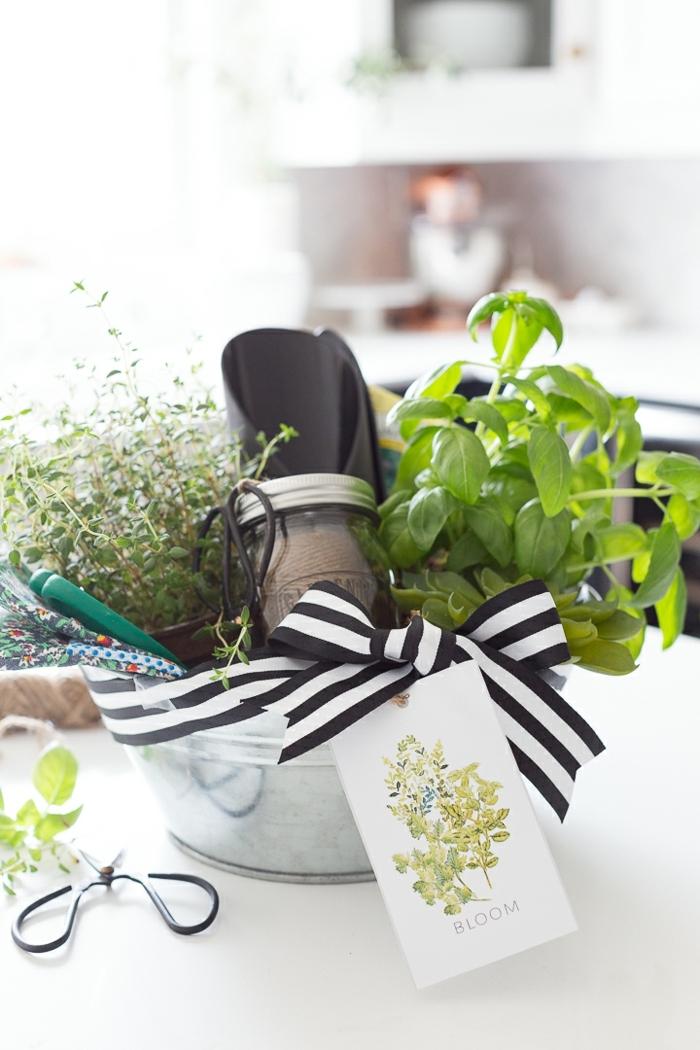 kit de regalos pequeños, hierbas frescas, utensilios para la cocina, regalos para jardineras, que regalar a tu suegra