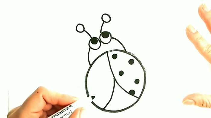 learn to draw step by step, simple ladybug drawings, little things to draw on photos
