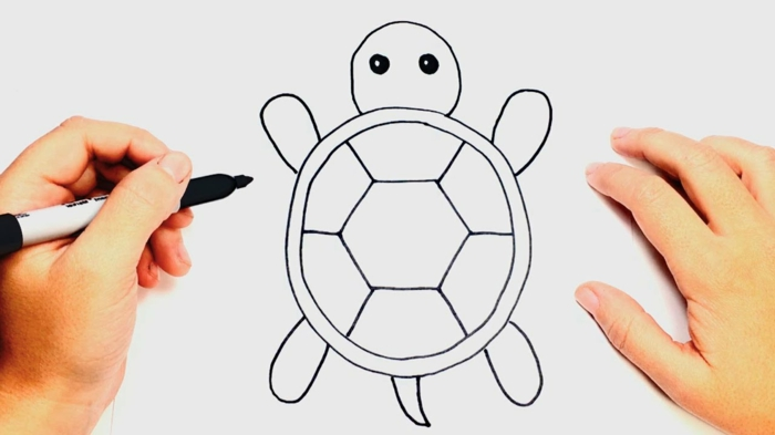 pequeña tortuga super fácil de dibujar, imagenes de dibujos faciles para niños, como dibujar animales pequeños
