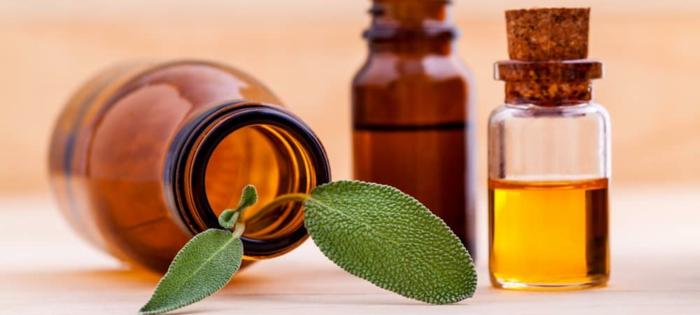 aromatizante DIy que huele a eucalipto, ideas de recetas caseras para hacer un aromatizador casero fuerte y duradero