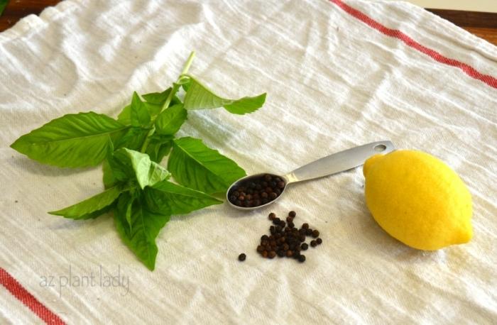 limón, pimienta negra y albahacas, ingredientes naturales para aromatizar la casa en verano, DIY air freshener ideas con recetas