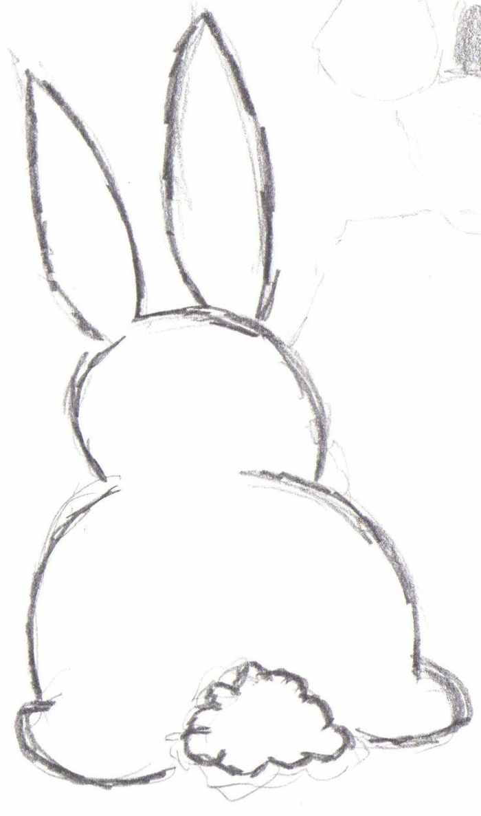 pencil drawing rabbit, easy animal drawing ideas for kids and beginners, basic drawings