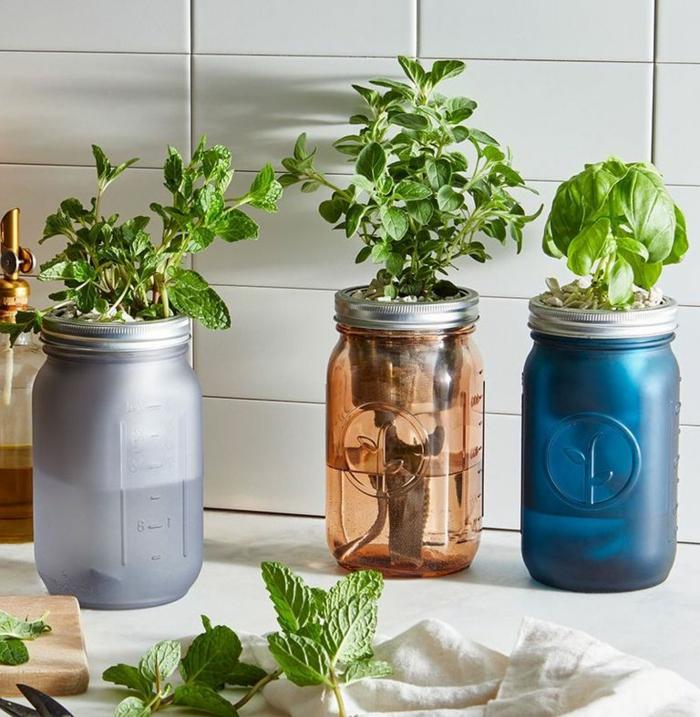 fantásticas ideas de regalos dia de la madre DIY para jardineras, especias y hierbas frescas en macetas DIY