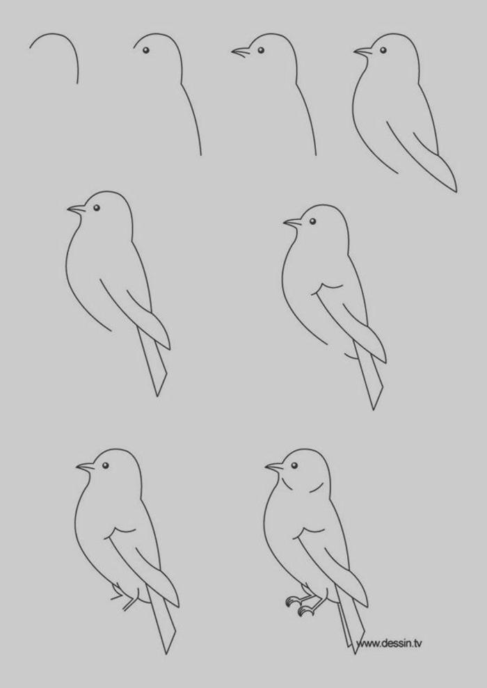 dibujos en blanco y negro con lapiz, ideas de dibujos lindos de animales y aves, fotos de dibujos con tutoriales paso a paso, dibujos en blanco y negro para principiantes