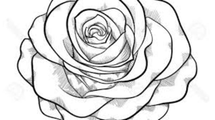 dibujo de rosa super fácil de hacer, ideas de dibujos de rosas, originales ideas de dibujos para niños sencillos para calcar