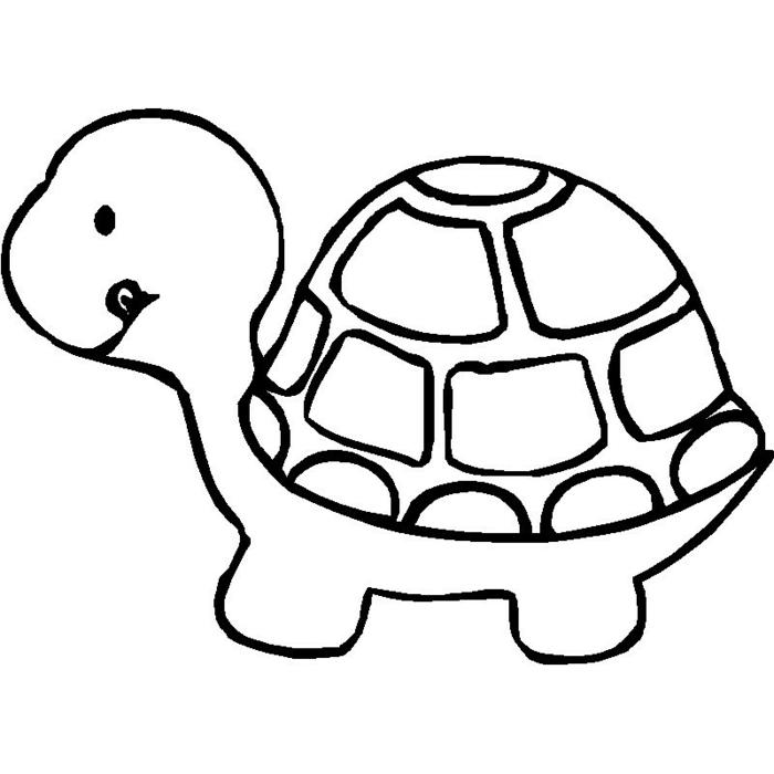 ideas sobre como dibujar animales, dibujar una tortuga paso a paso, dibujos para calcar originales y fáciles de hacer
