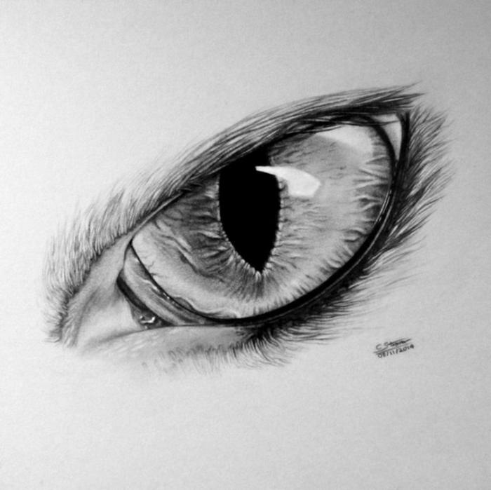 ojo de gato dibujado a pencil, gato dibujado con sombras, técnicas para sombrear, dibujos a lápiz originales y fáciles de hacer