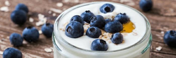 yogur griego con copos de avena, miel y arándanos frescos, recetas sanas para cenar, ideas para bajar de peso