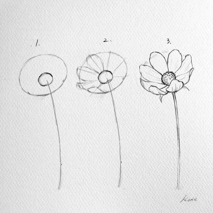 dibujo flor a lapiz paso a paso, las mejores ideas de tutoriales para aprender a dibujar esta primavera, fotos de diubjs