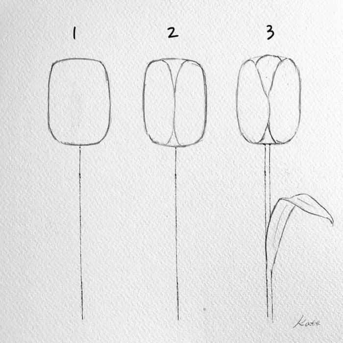 dibujos bonitos y super sencillos, dibujos de flores faciles en imagenes, como dibujar un tulipan en tres pasos, fotos de dibujos