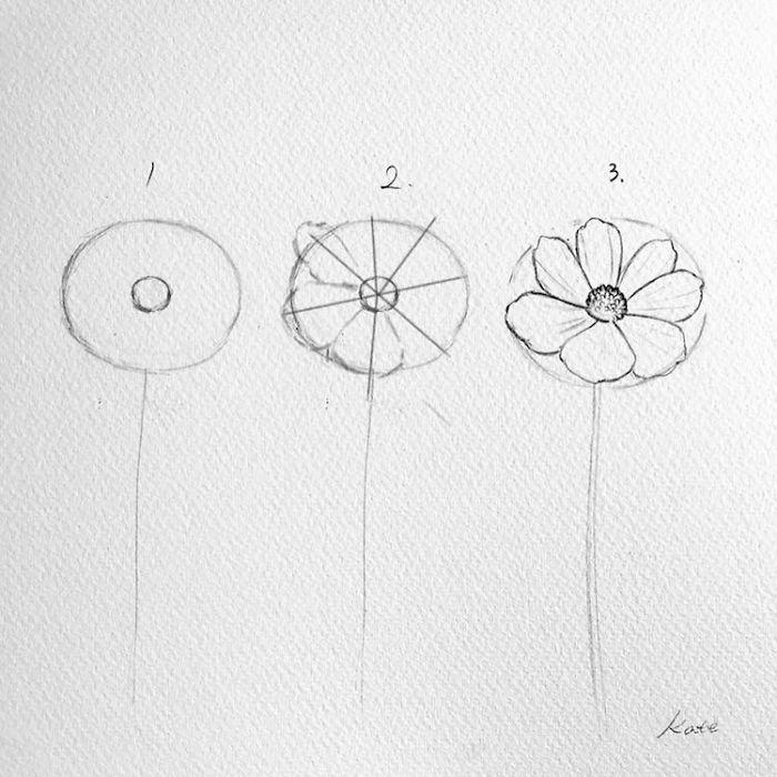 dibujo flor bonitos y super faciles de dibujar en solo tres pasos, pequeño narciso dibujado a lapiz paso a paso fotos
