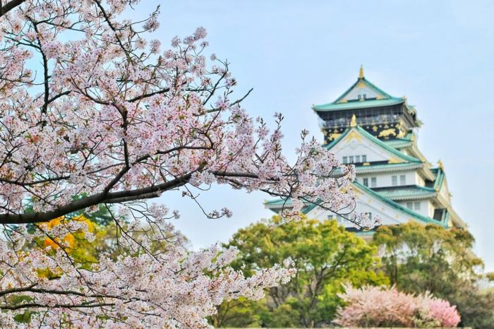 preciosos ejemplos de paisajes de japon para descargar, fotos de paisajes romanticos unicos, geniales ideas de fotos