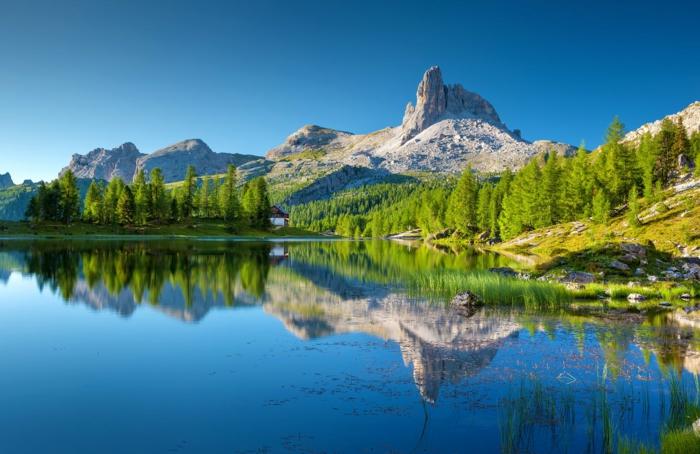 imagenes relajantes y bonitas que muestran la belleza de la naturaleza, las mejores ideas para combatir el estres durante el confinamiento