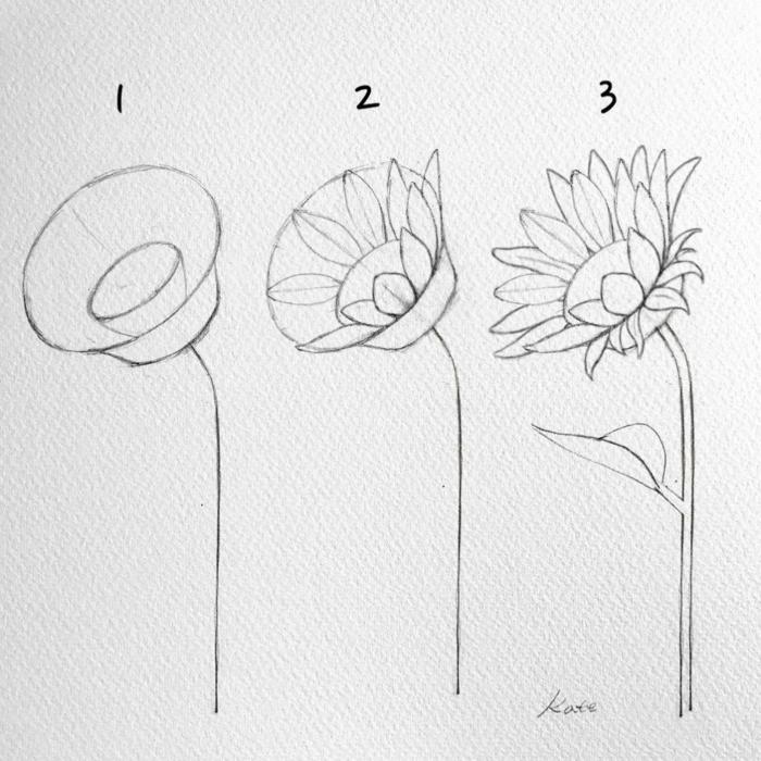 como dibujar una flor preciosa paso a paso, las mejores ideas de dibujos para niños y principiantes en tres pasos simpres