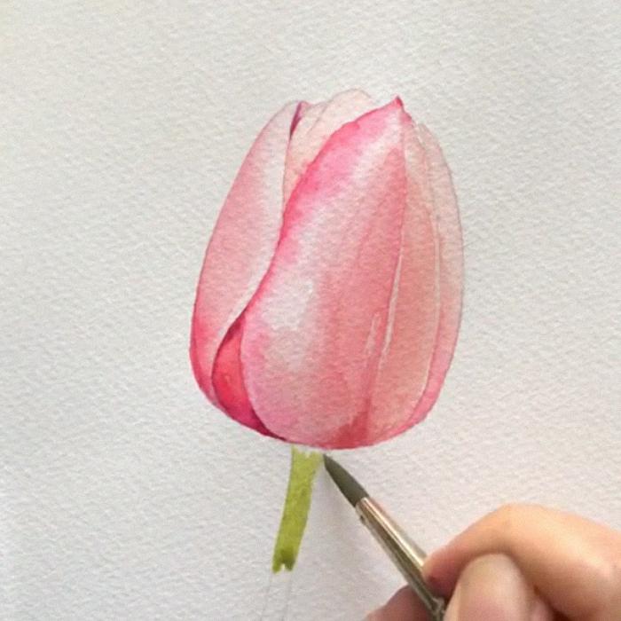 ibujos de flores faciles, pasos para dibujar un tulipan con acueralas, ideas de dibujos sencillos y hermosos en fotos