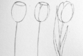 Aprende a dibujar: 80 ideas de dibujos de flores fáciles
