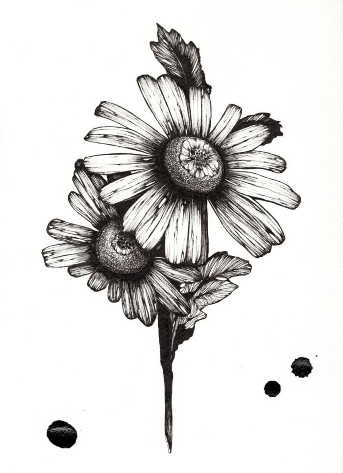 dibujos tumblr flores bontias, ideas de dibujos originales y faciles de hacer, como dibujar a lapiz flores y plantas bonitas