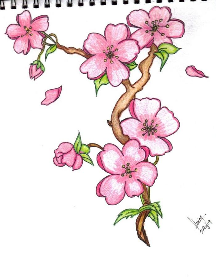 ramos de flores bonitos para dibujar, árboles frutales florecidos en color rosado, dibujos faciles para dibujar a lápiz