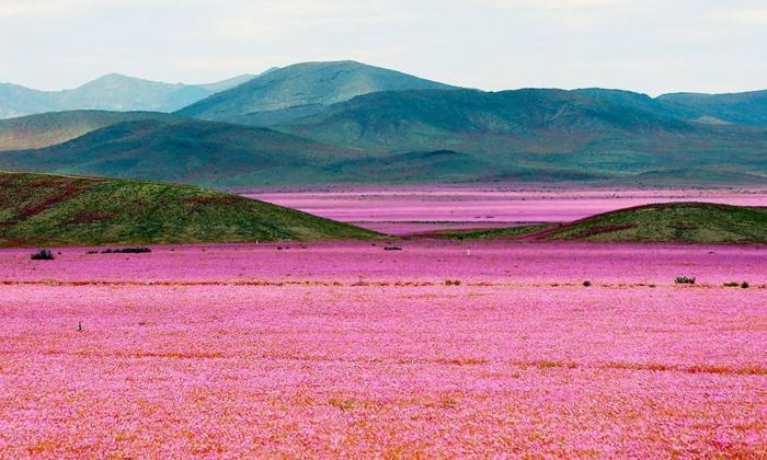 fondos de pantalla primavera е imagenes de paisajes. paisajes montañosos verdaderamente bonitos para descargar