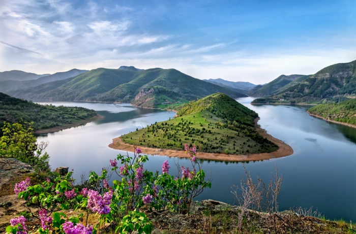 fondos de pantalla de flores y paisajes de montaña inspiradores, descargar fotos gratis con bonitos paisajes, ideas en fotos