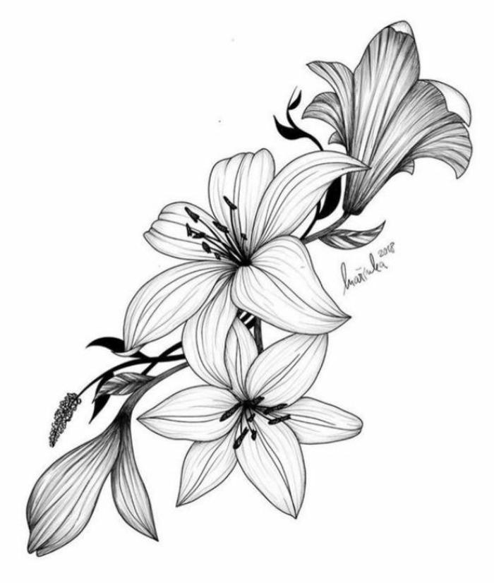 ramo de flores dibujo en blanco y negro que enamoran, ideas para pasar tu tiempo en casa, ejemplos de actividades pequeocio