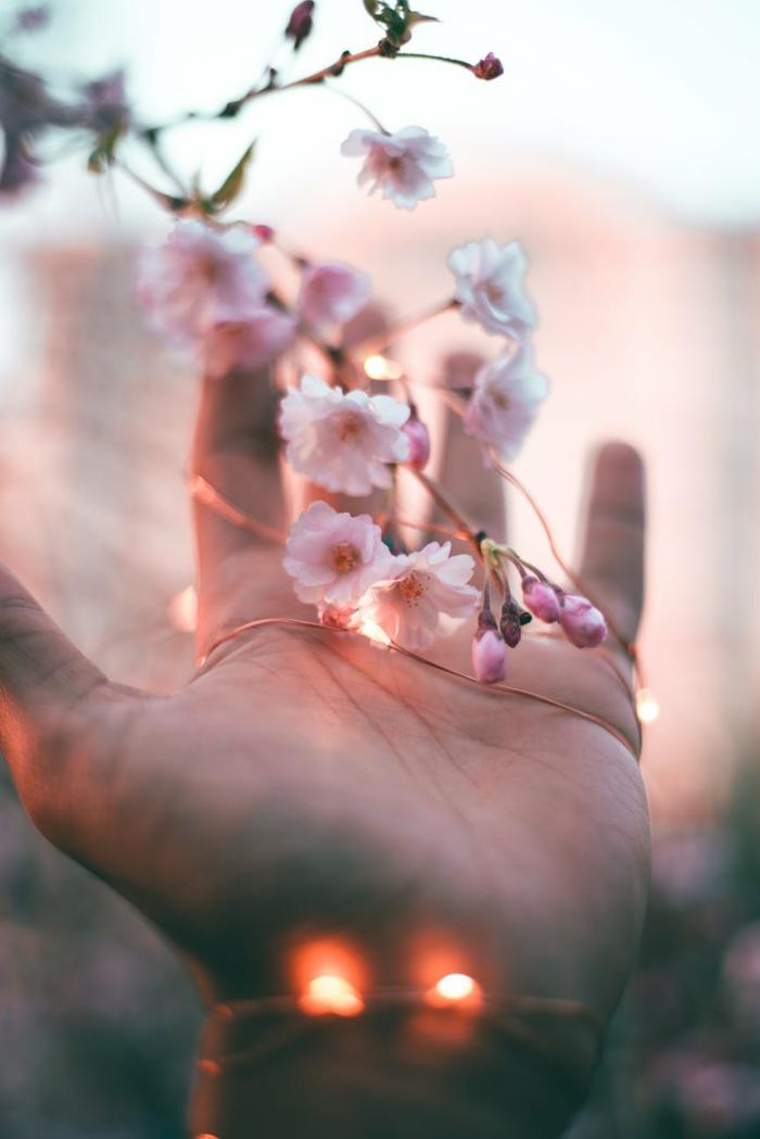 detalles bonitos de la primavera ne fotos, los mejores fondos de pantalla, descargar mas de 100 imagenes para fondo