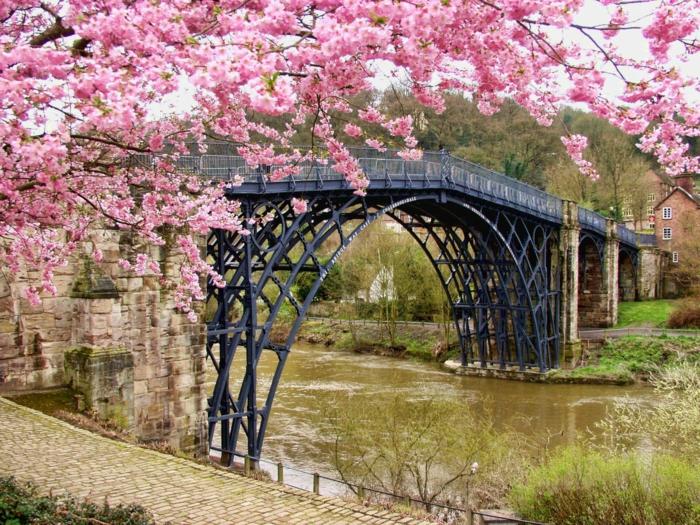 hermosos puente con árboles florecidos en primavera, imagenes con rios y montañas hermosos para descargar