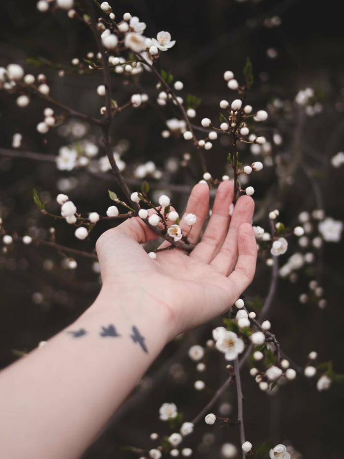 ideas para contemplar la belleza de la primavera, paisajes naturales, la hermosura de los frutales, imagenes bonitas
