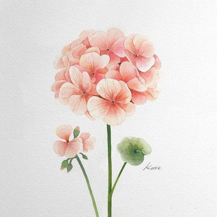 dibujos faciles de hacer con pintura acuarela, fotos de dibujos de flores en bonitas colores para redibujar, ideas de dibujos