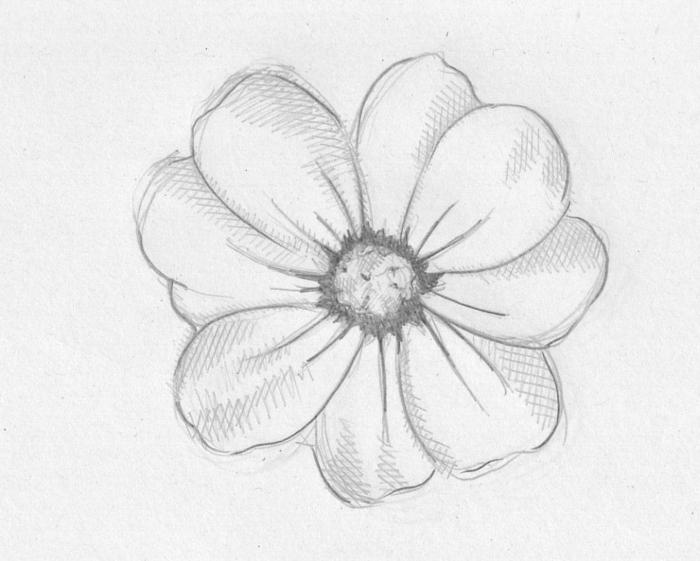como dibujar una rosa paso a paso, flores para descargar originales, ideas de flores hermosas, dibujos para calcar originales