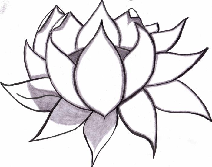 hermosos dibujos de flores que puedes carcar, fotos de dibujos bonitos y faciles de hacer, como dibujar una flor de loto