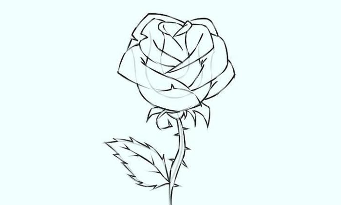 dibujos en blanco y negro, preciosas imagenes dibujo rosa, como dibujar una flor rosa paso a paso, dibujos que enamoran