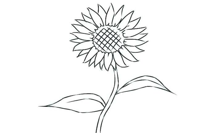 ideas de dibujos sencillos y fáciles de hacer, dibujos de flores bonitas para calcar, dibujos para redibujar originales