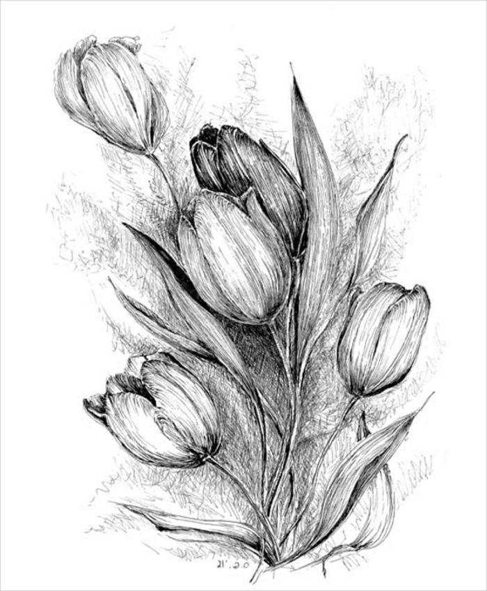 técnicas bonitas y fáciles de hacer de dibujos sencillos, dibujos de flores bonitas, ideas de dibujos para redibujar originales