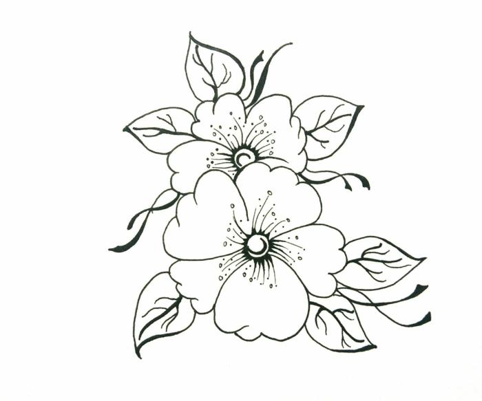dibujos de flores bonitas y fáciles, dos flores sencillos y bonitos, originales ideas de dibujos para tu pasatiempo, ideas pequeocio