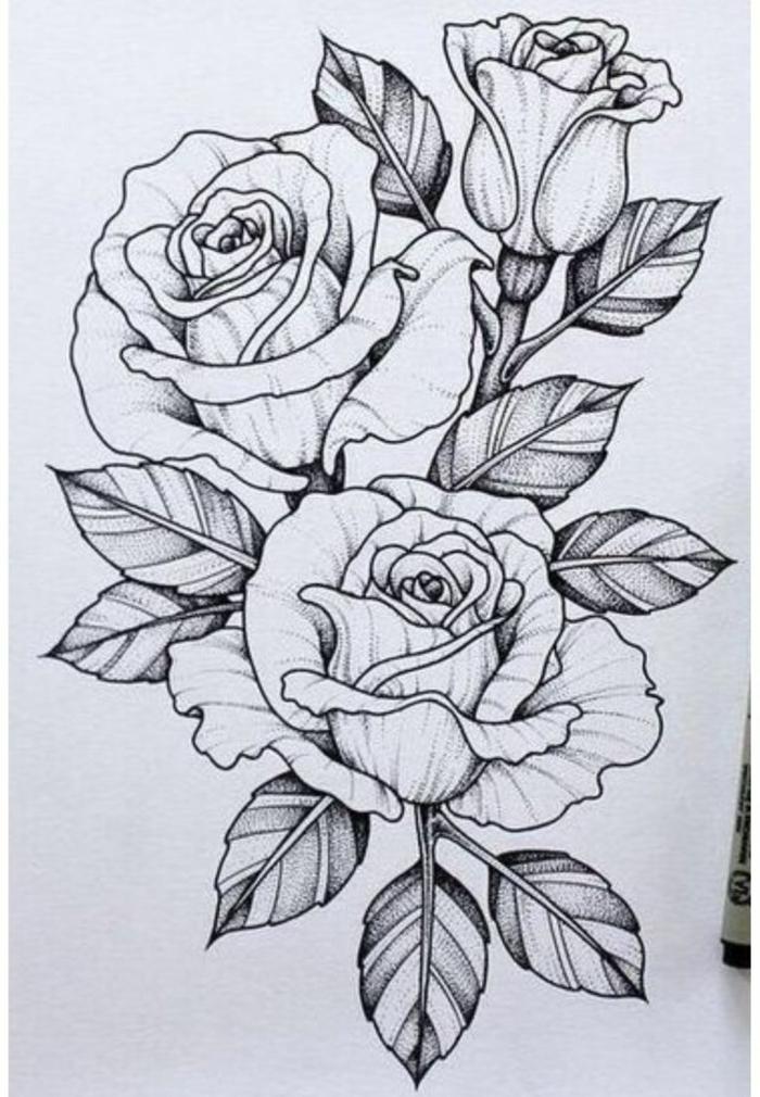dibujos de flores bonitas, dibujo de tres rosas, como dibujar una rosa florecida, ideas de dibujos de flores bonitas para redibujar