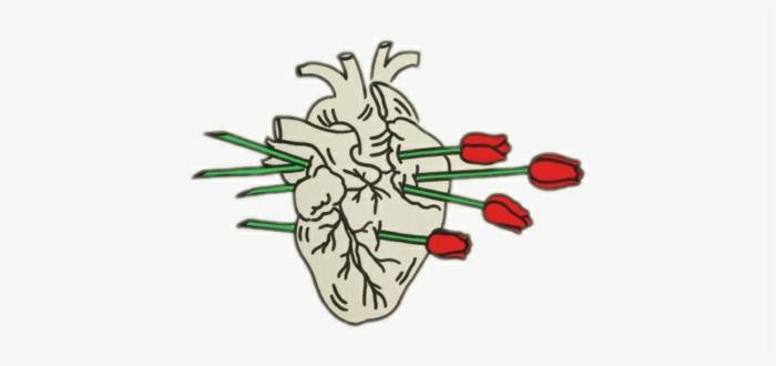 corazón anatómico con ramos de rosas rojas, dibujos tumblr blanco y negro y dibujos en colores, descargar dibujos originales