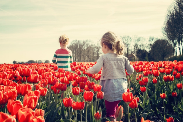 dos niños jugadno en un campo con tulipanes en color rojo, imagenes primavera, dos niñas jugando en las flores