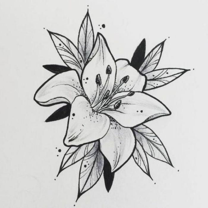 dibujos de flores bonitas, dibujo de bonita flor en blanco y negro, flor con antenas , petalos y hojas, diseños de dibujos