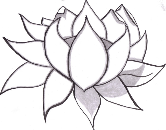 como dibujar una flor de loto, ideas de dibujos chulos y faciles de hacer, dibujos de flores, calcar dibujos faciles de hacer